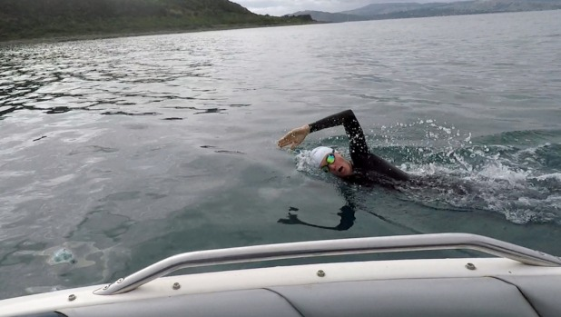 1492125715185 - A school project could one day see Peter Mitchell swim Cook Strait